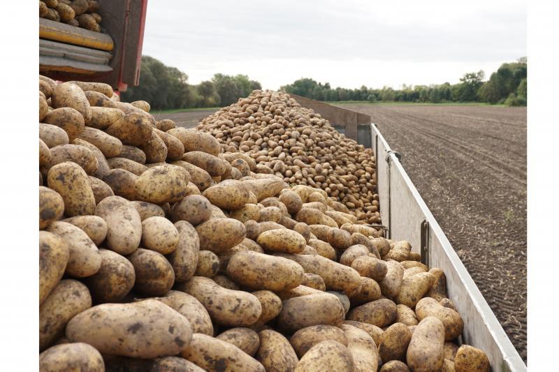 Heisshof Landwirtschaft