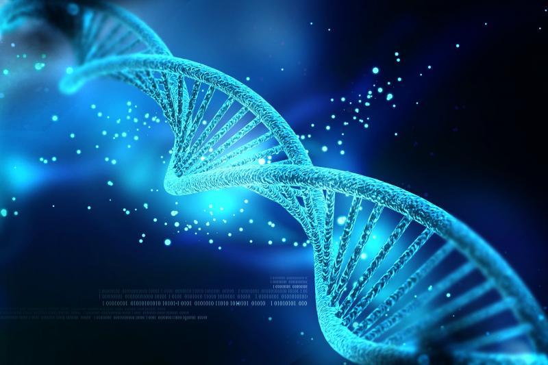 Reise zu den Körperzellen - Erfahren Sie neues der modernen Medizin