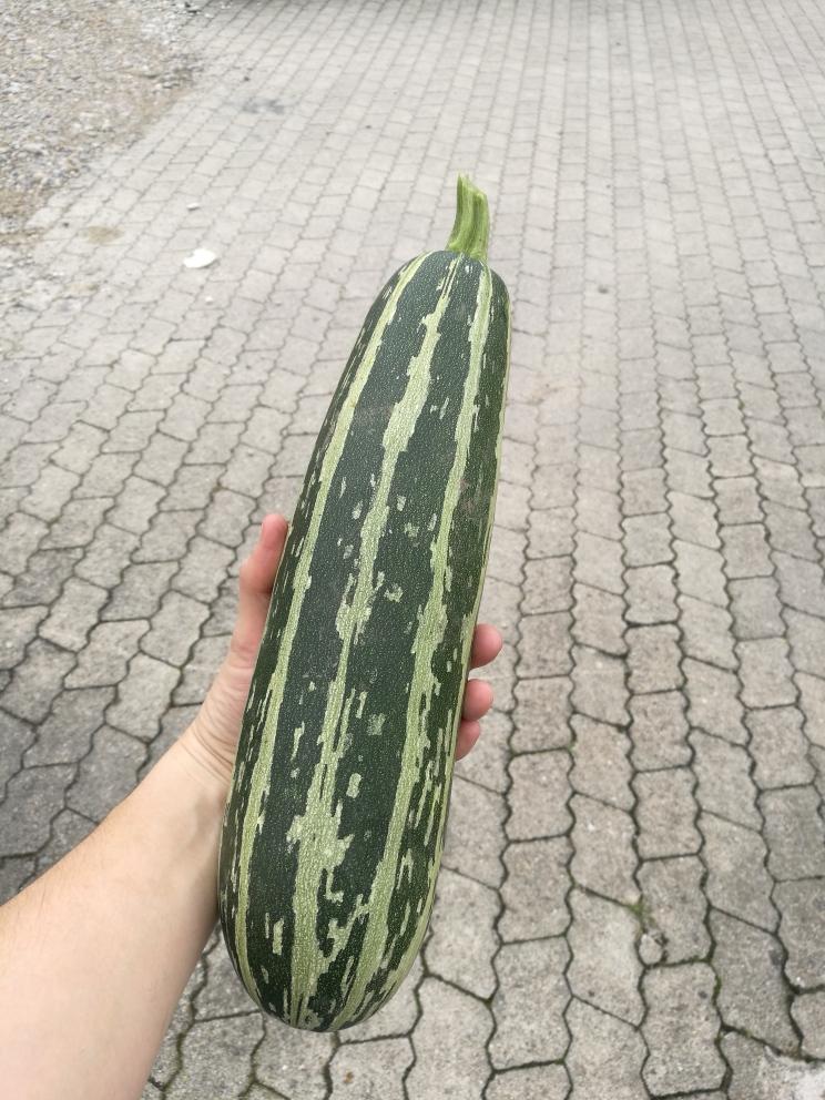 Zucchini-Spätzle-Rezept
