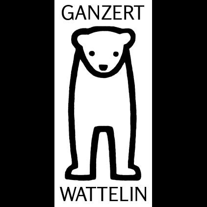 GanzertMund-Nasen-Schutz(MNS)